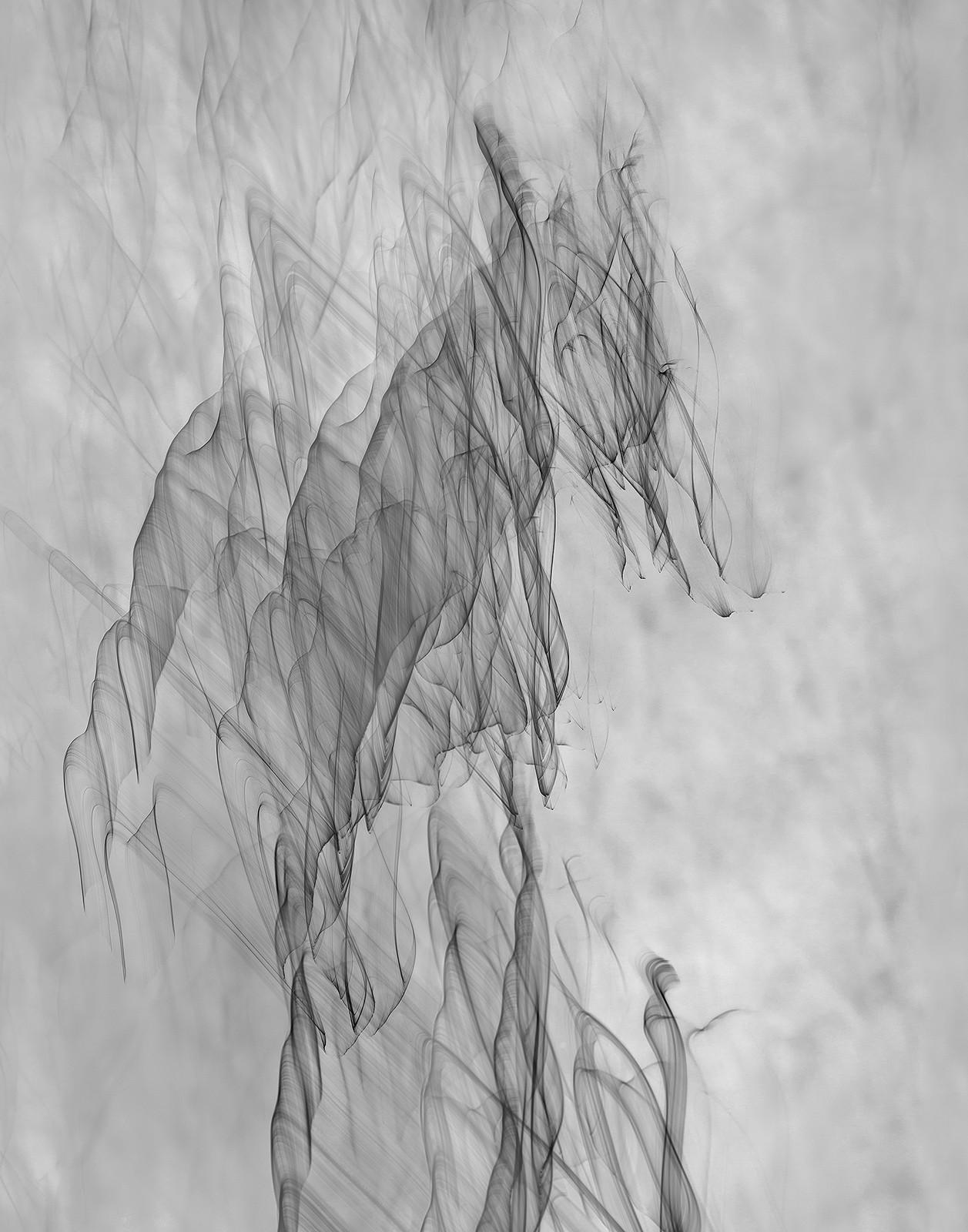 "Adult Winner: ""The Shaman's Horse"" by Ken Fowkes"