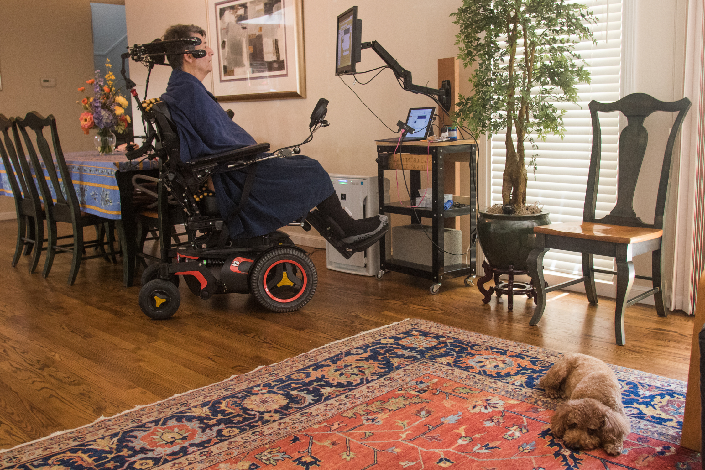 Jon Ferraiolo reads news articles online using his eye-tracking software at his home workstation on May 9, with his dog, Pepe, beside him.