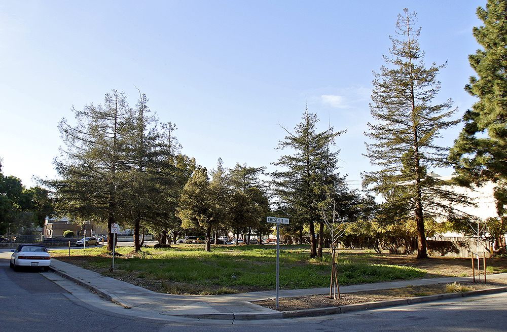An empty lot at Chestnut Avenue and Ash Street, adjacent to Boulware Park. Photo by Veronica Weber.