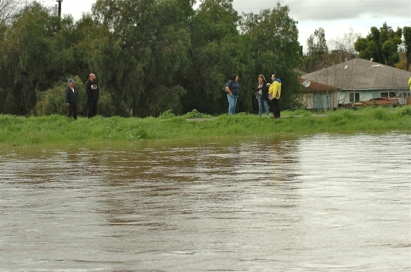 Onlookers on the East Palo Alto side of the Baylands levee along the San Francisquito Creek monitor fast-flowing water on Feb. 7, 2017. The San Francisquito Creek Joint Powers Authority works tocontrol flooding from the creek, which passes throughMenlo Park, Palo Alto and East Palo Alto. (Photo by Keith Peters.)