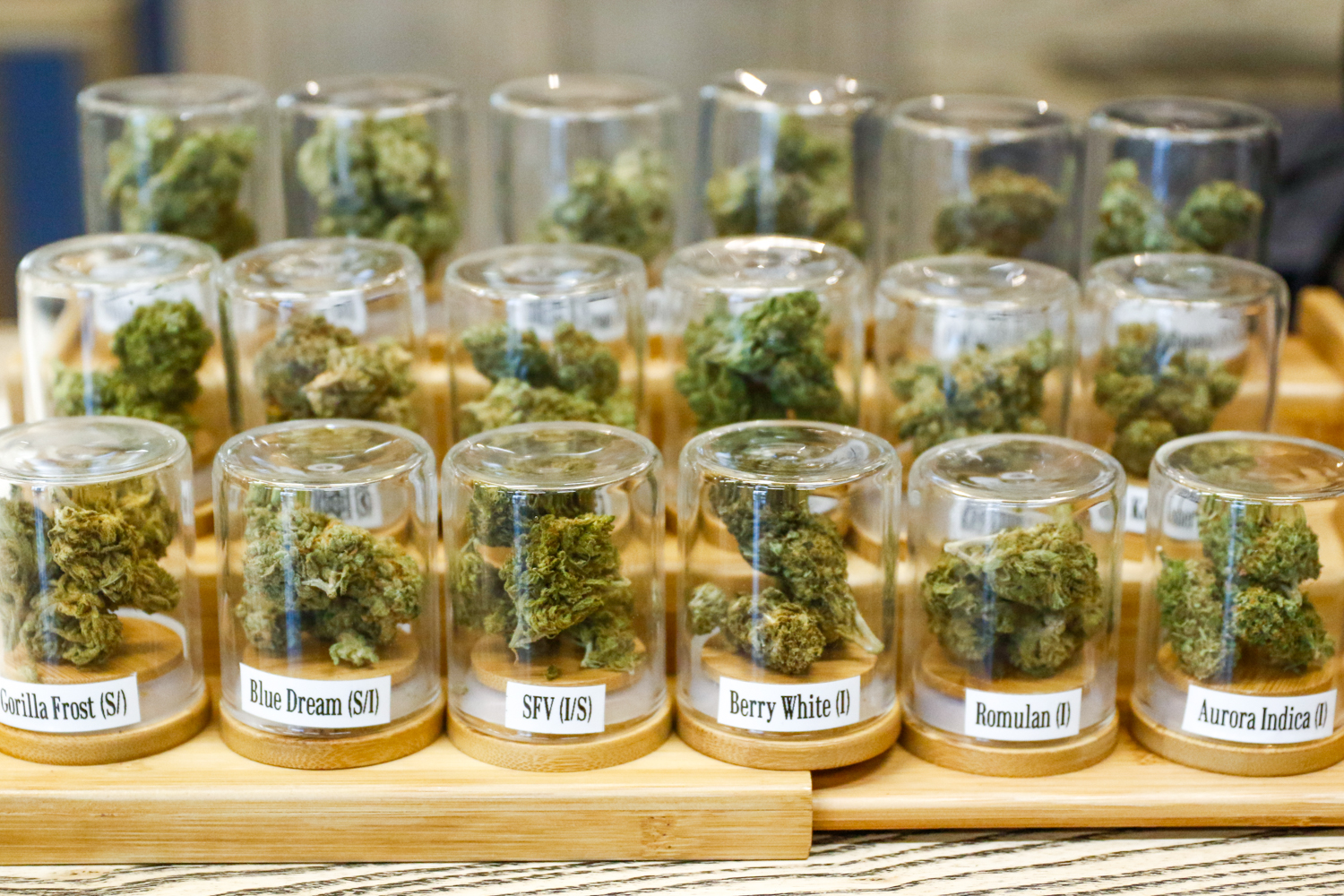 """A selection of  Indica, Sativa, and Hybrid marijuana buds, also known as """"flowers"""" for sale at The Guild, a medicinal marijuana dispensary in San Jose. Photo by Veronica Weber."""