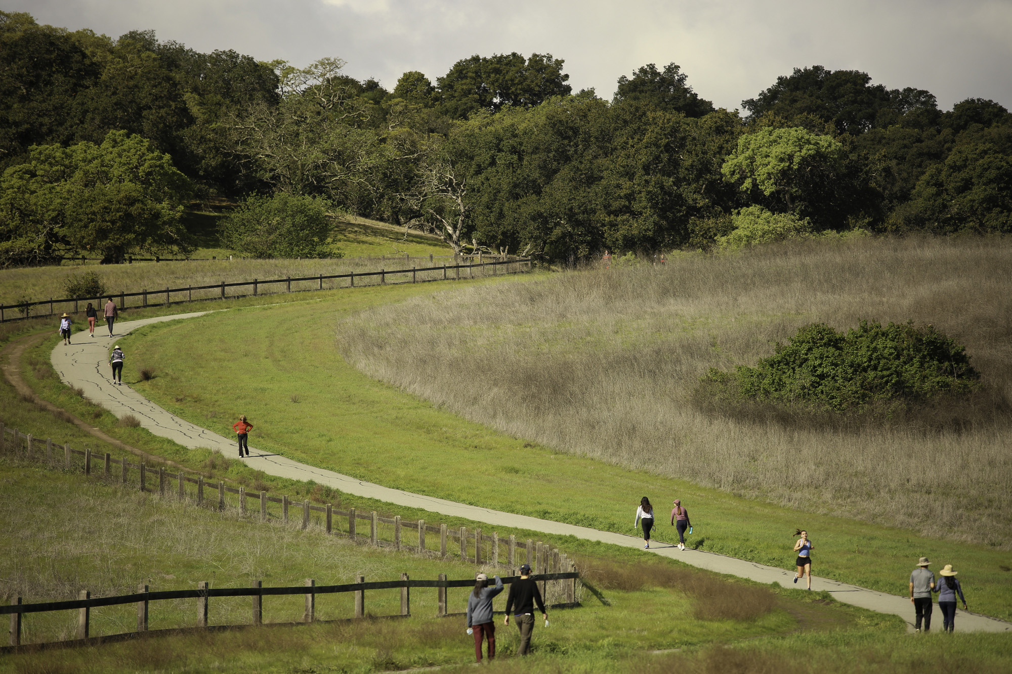 People walk and run on a trail leading to the Stanford Dish in Palo Alto on March 19. Photo by Sammy Dallal.