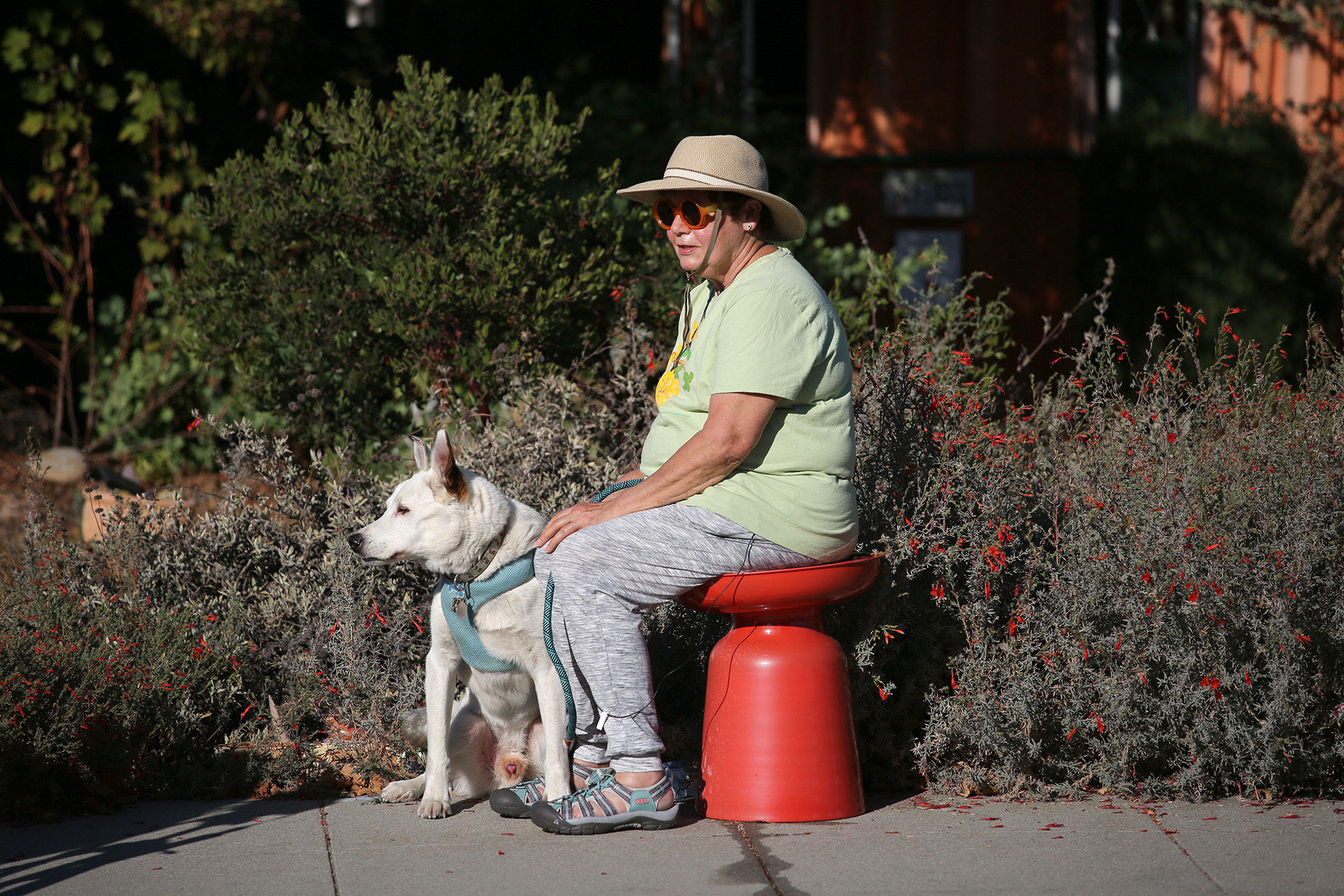 Former engineer Cynthia Typaldos sits with her dog, Bunny, outside their home on the 3000 block of Greer Road, where she knows almost everyone. Photo by Sammy Dallal.
